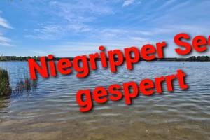 Niegripper See